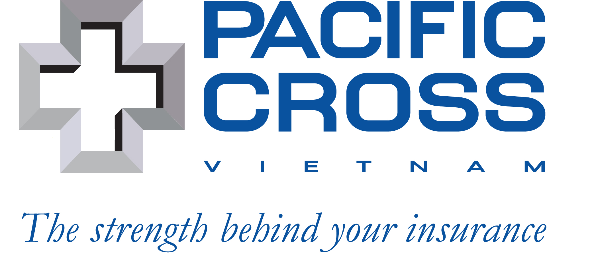 Image result for pacific cross vietnam